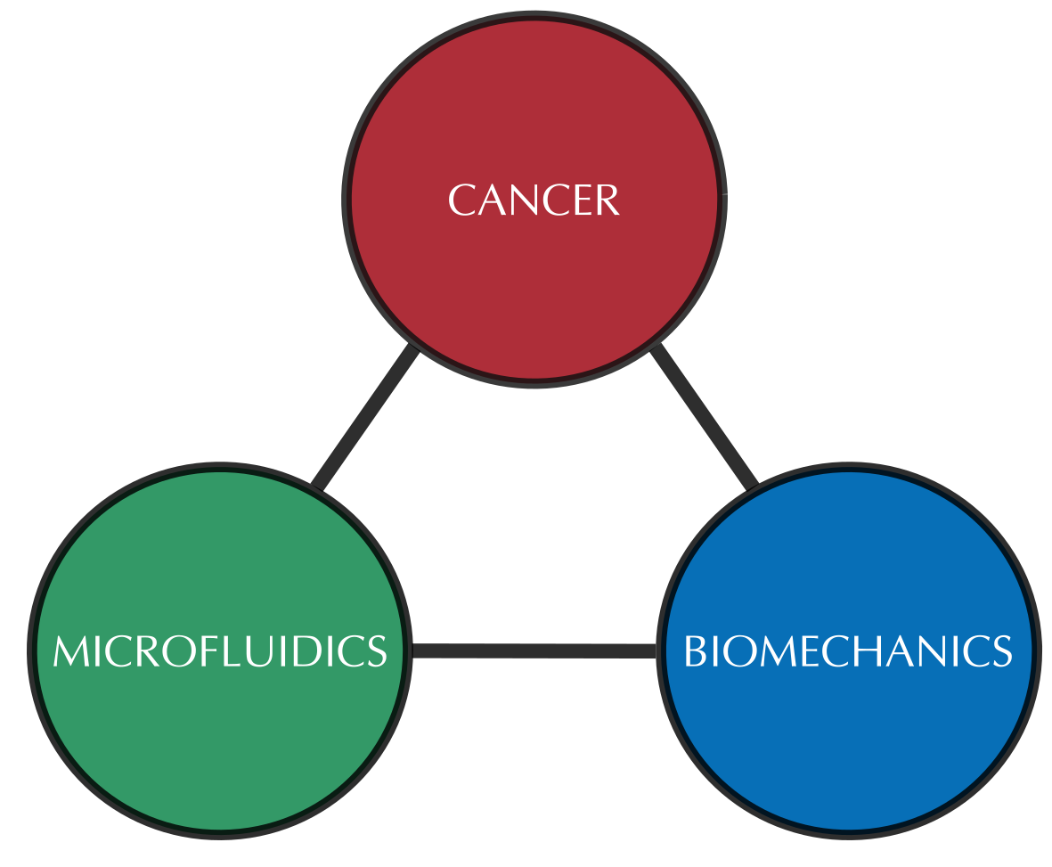 Bioengineering Studies in Metastatic Cancer