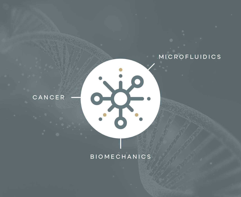 Bioengineering Studies in Metastatic Cancer